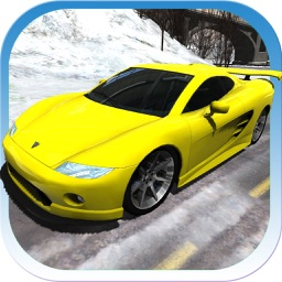 Sports Cars Racing Winter PRO