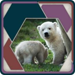 HexSaw - Animal Babies