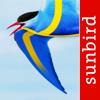 Alla Sveriges fåglar – en fullständig fältguide till den officiella listan över registrerade fågelarter i Sverige