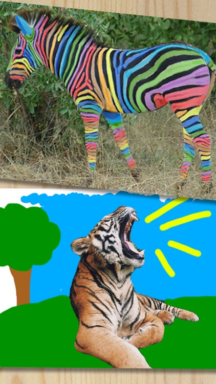 Paint drawings on photos - Premium
