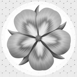 Flowers By Jane