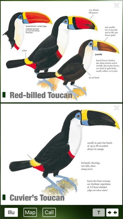 All Birds Venezuela - a complete field guide to identify all the bird species recorded in Venezuela screenshot-3