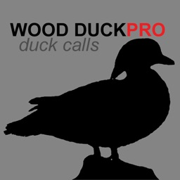 Wood Duck Calls - Wood DuckPro Duck Calls