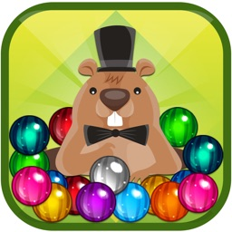 Pet Frenzy - The Most Famous Puzzle Free Game