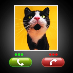 Fake Call Cat Prank