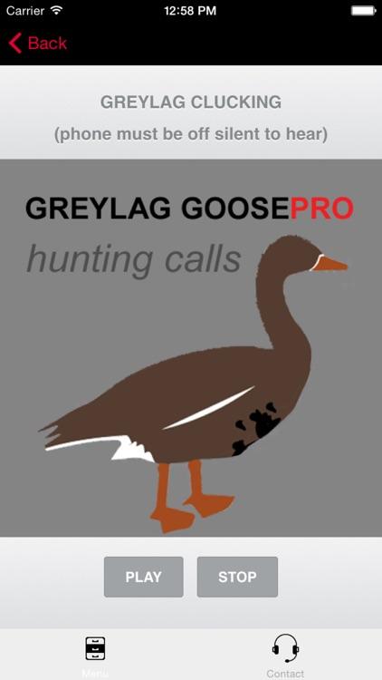 REAL Greylag Goose Hunting Calls - Greylag Goose CALLS & Greylag Goose Sounds! (ad free) BLUETOOTH COMPATIBLE screenshot-0