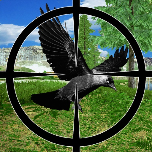 Crow Bird Hunter 2016