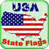 Jenny sun - Master USA State flags artwork