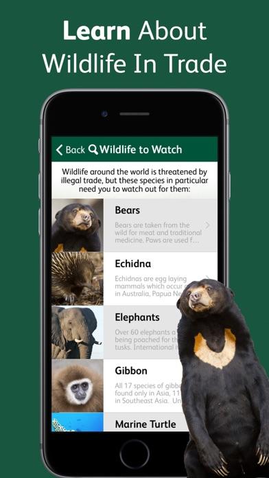 Wildlife Witness screenshot four