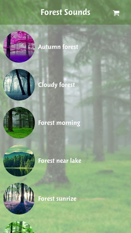 Forest Sounds For Relaxing-Free soothing nature sounds & jungle
