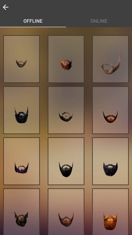 Beard Photo Booth - Beard Photo Montage