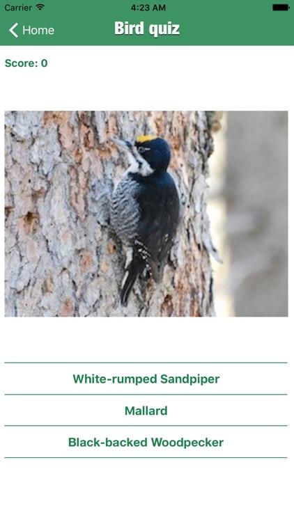 Bird Guide - Offline bird identification app screenshot-4
