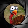 Jive Turkey Shoot - iPhoneアプリ