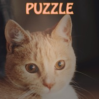 Codes for Merged Hex _ Cute cats party and simple type of the 2048 Hack