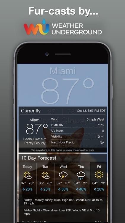 Weather BUB screenshot-3