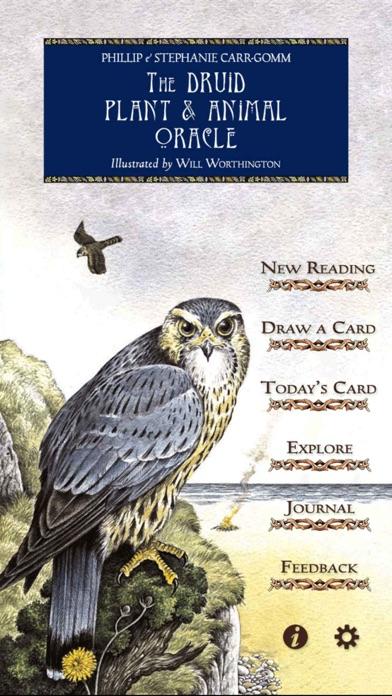 Druid Oracle Cards-0