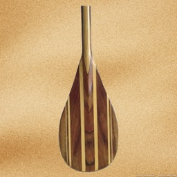paddle assist - your personal coach and metronome