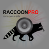 Raccoon Calls - Raccoon Hunting - Raccoon Sounds - Joel Bowers