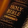 聖經(中英對照) Reviews