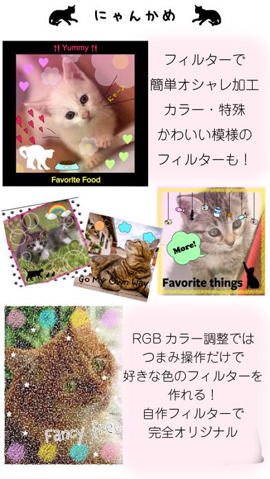 にゃんかめ 高画質マナー(無音)カメラ 〜猫のためのデコアプリ〜のおすすめ画像4