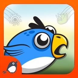 Crazy Blue Bird