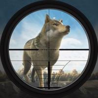 Codes for Wild Wolf Super Hunter Hack
