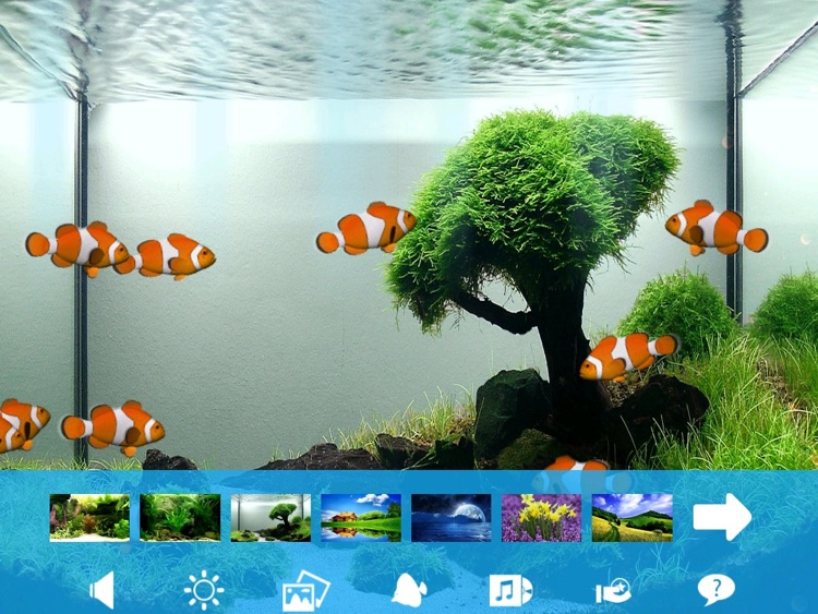 Aquarium Now HD screenshot-3