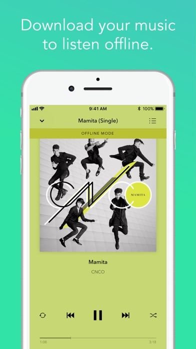Pandora Music app image