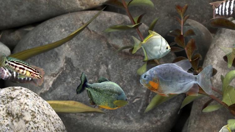 MyLake 3D Aquarium screenshot-3