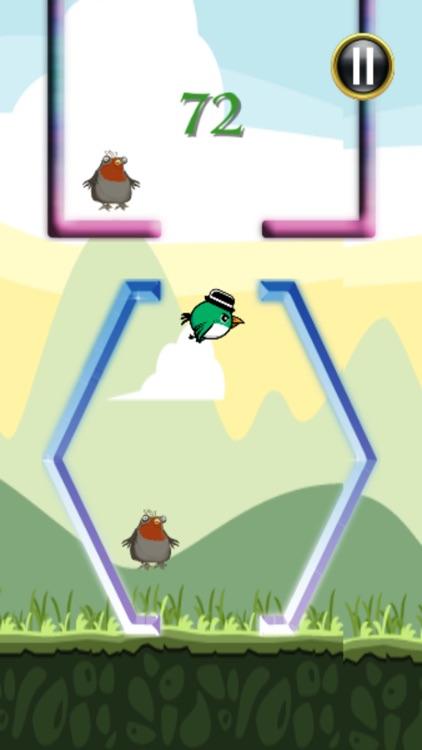 Birds Adventure Midair Game Free screenshot-3