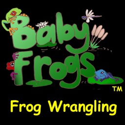 Baby Frogs - Frog Wrangling