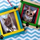 Cat Photo Frames icon
