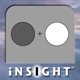 iNSIGHT Scaling Vision