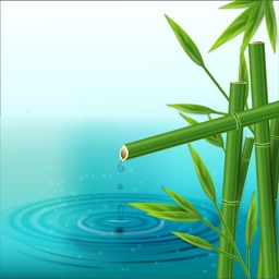 Bamboo Truyện