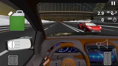 高速公路赛车手:模拟狂热 App 截图