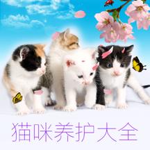 猫咪养护大全 - 萌宠猫咪养护训练饲养参考大全