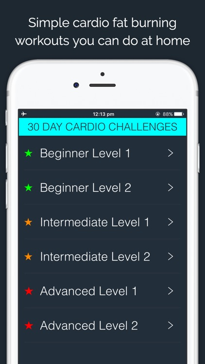 30 Day Cardio Challenge by 30 Day Fit Body