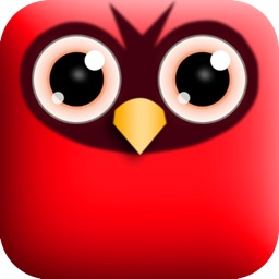 PopBirds - A funny puzzle strategy game