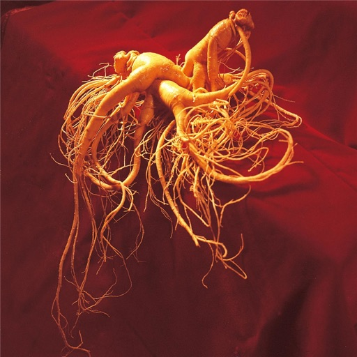 Ginseng:Growing and Marketing Guide