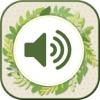 自然 着メロ - リラックス サウンド そして 無料 トーン - iPhoneアプリ