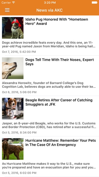 Dog News & Puppy Training Tips Pro