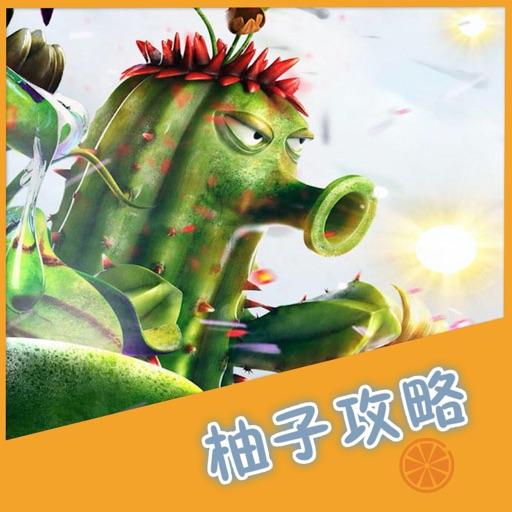 柚子攻略 for 植物大战僵尸 植物大战僵尸2