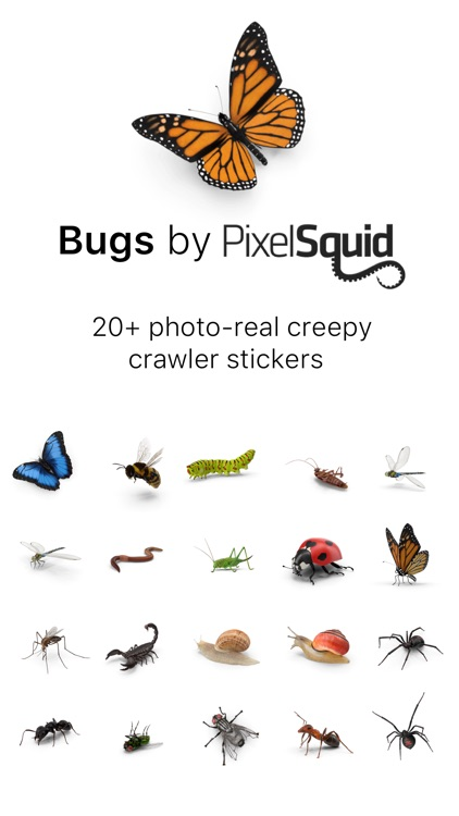 Bugs by PixelSquid