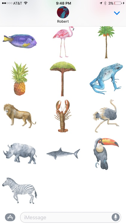 Watercolor Safari