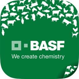BASF Feed