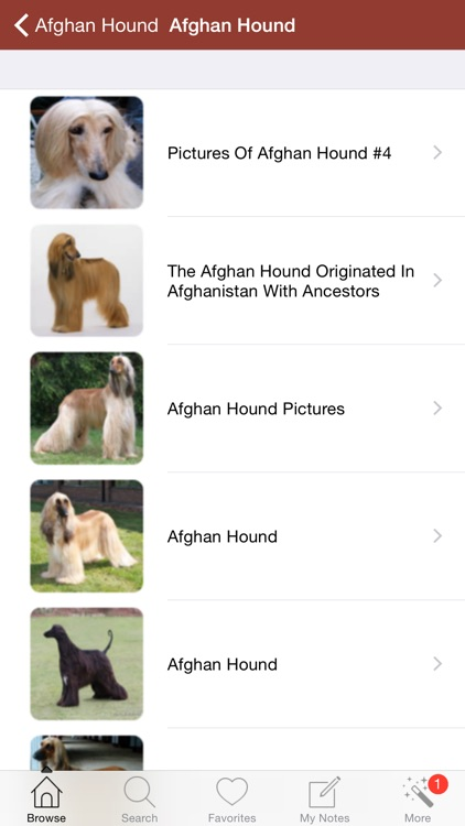 1,337 Dog Breeds,Veterinary