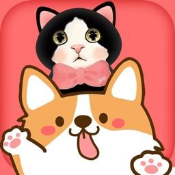猫狗语翻译器-人猫咪狗,动物宠物互相交流