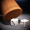 BLUFF 21: Traditional Mexican Dice Game