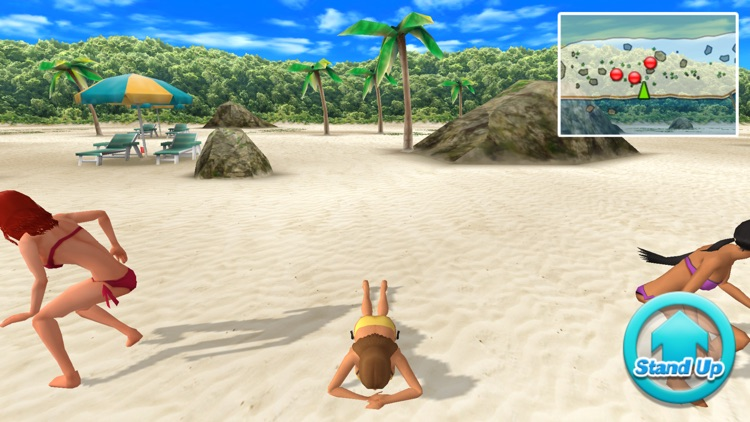 Beach Flag Paradise screenshot-2