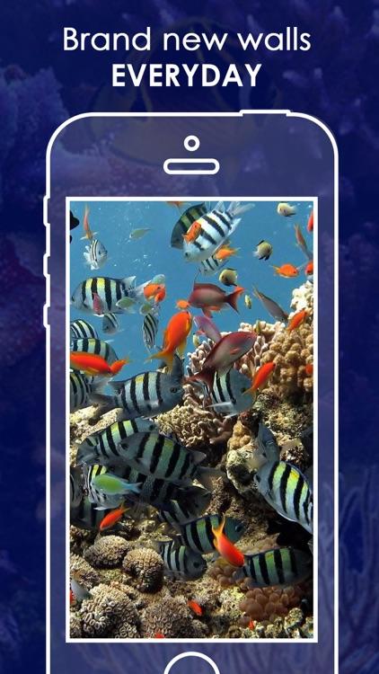 Live Aquarium HD Wallpapers | Backgrounds screenshot-4